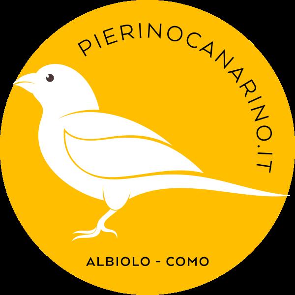 Pierino Canarino
